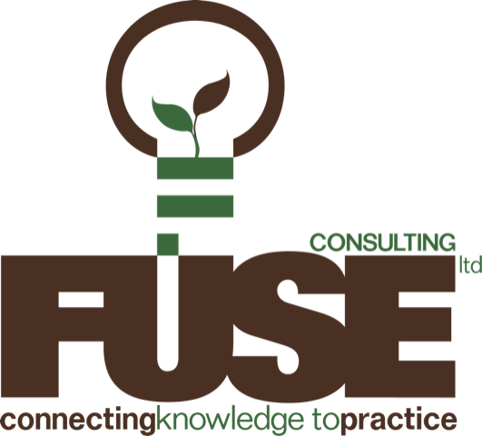 Partner: Fuse Consulting